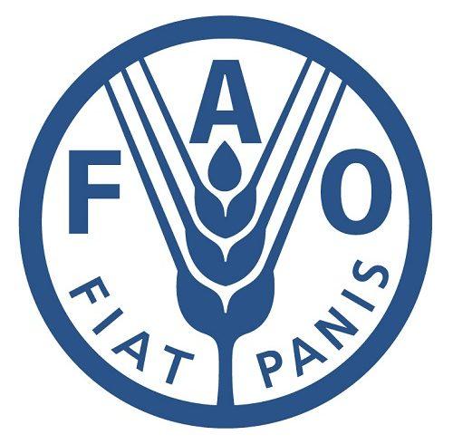 Cooperazione e sviluppo. Possibilità di stage presso la FAO